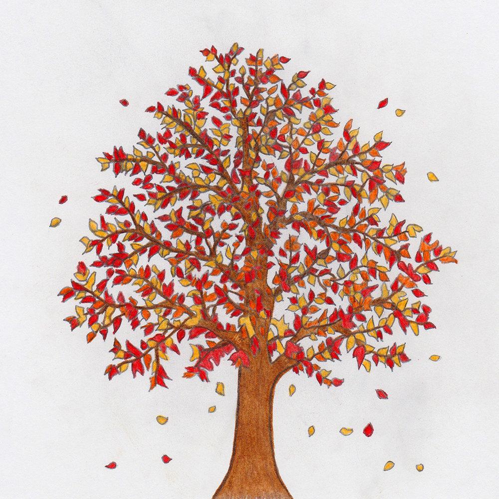 Illustrations_Tree.jpg