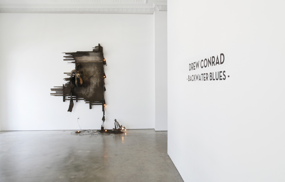 Installation View | 2013