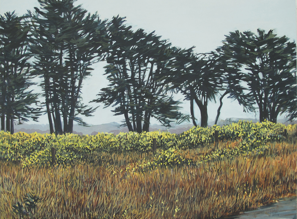 Point Reyes #8 (Sold)