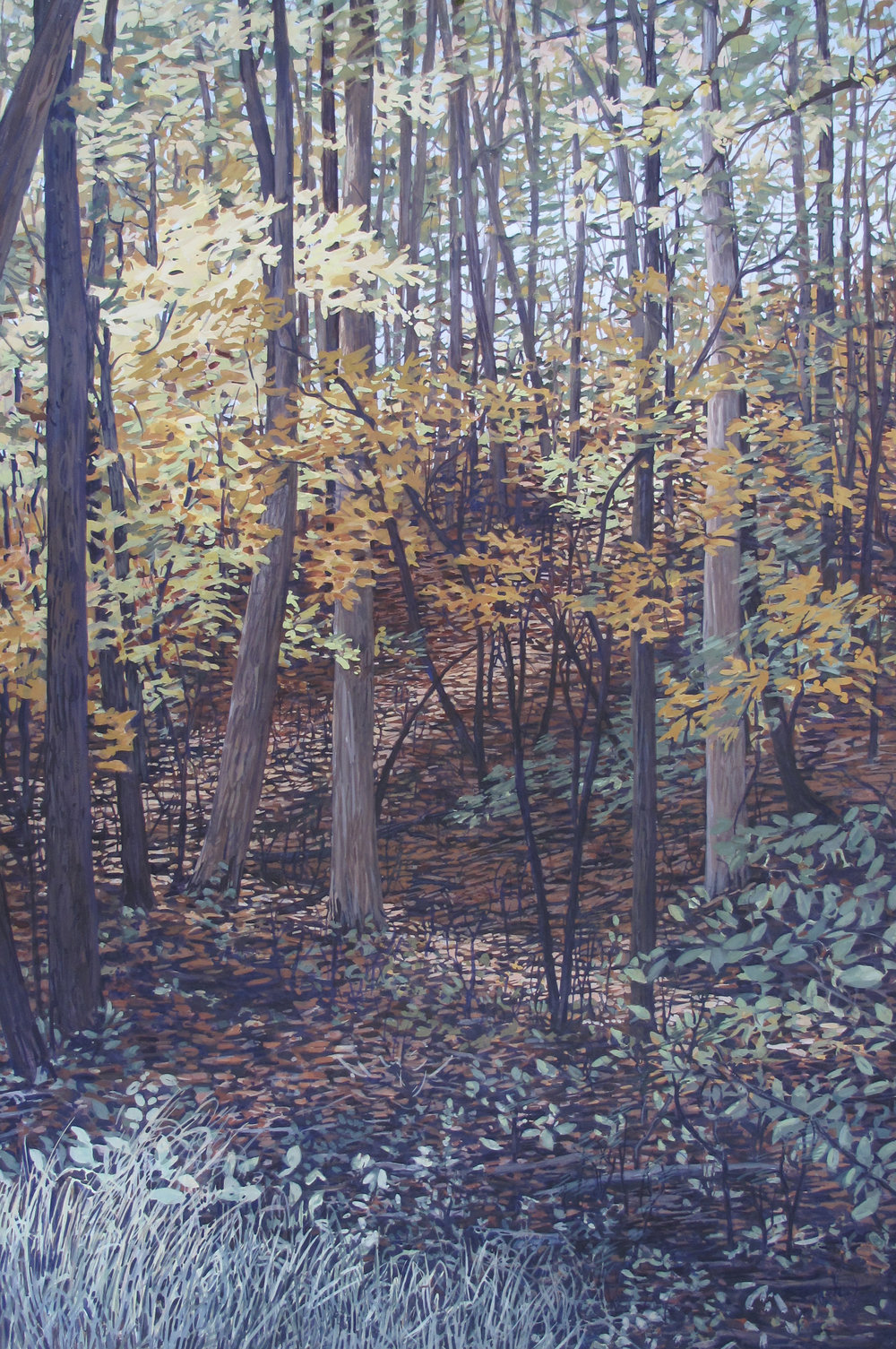 Passage:  Talcott Mountain State Park, 2017 (SOLD)
