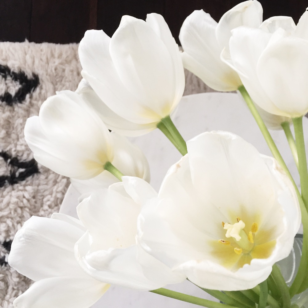 These white tulips are in my studio, but you can find them pretty much all over the rest of the house.
