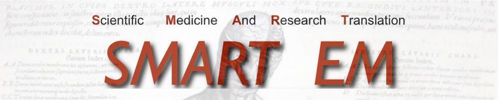 SMARTEM-webpage-banner2.jpg