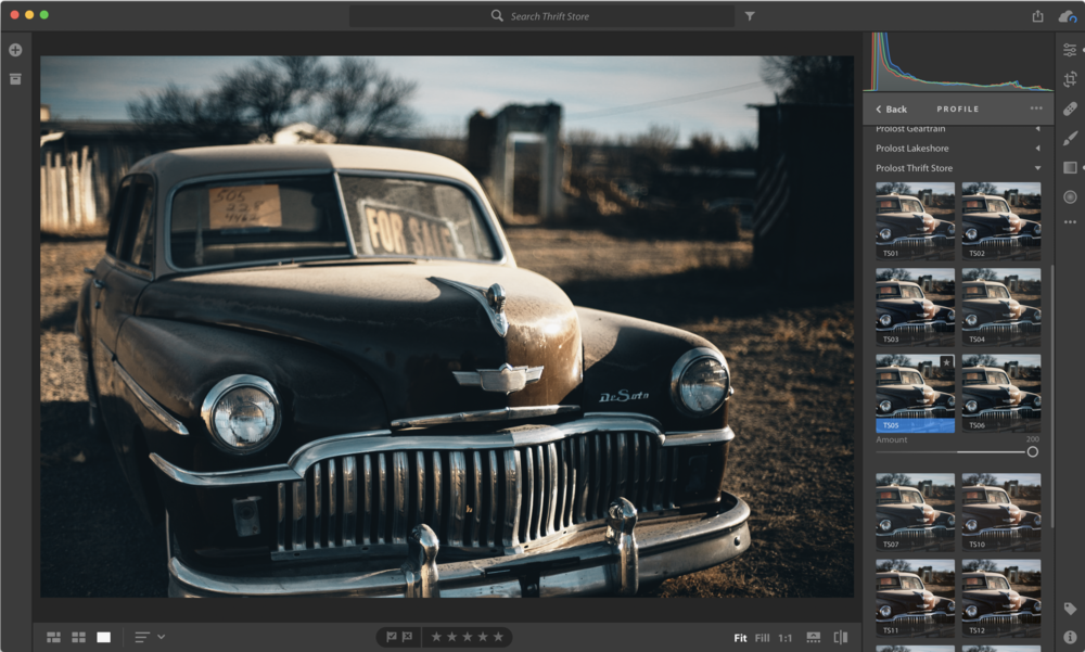 Prolost Profiles in the new Profile browser in Lightroom CC 1.3, released today.