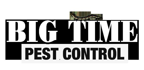 big time pest control