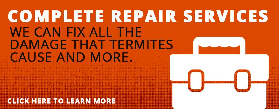 Termite Repair Services