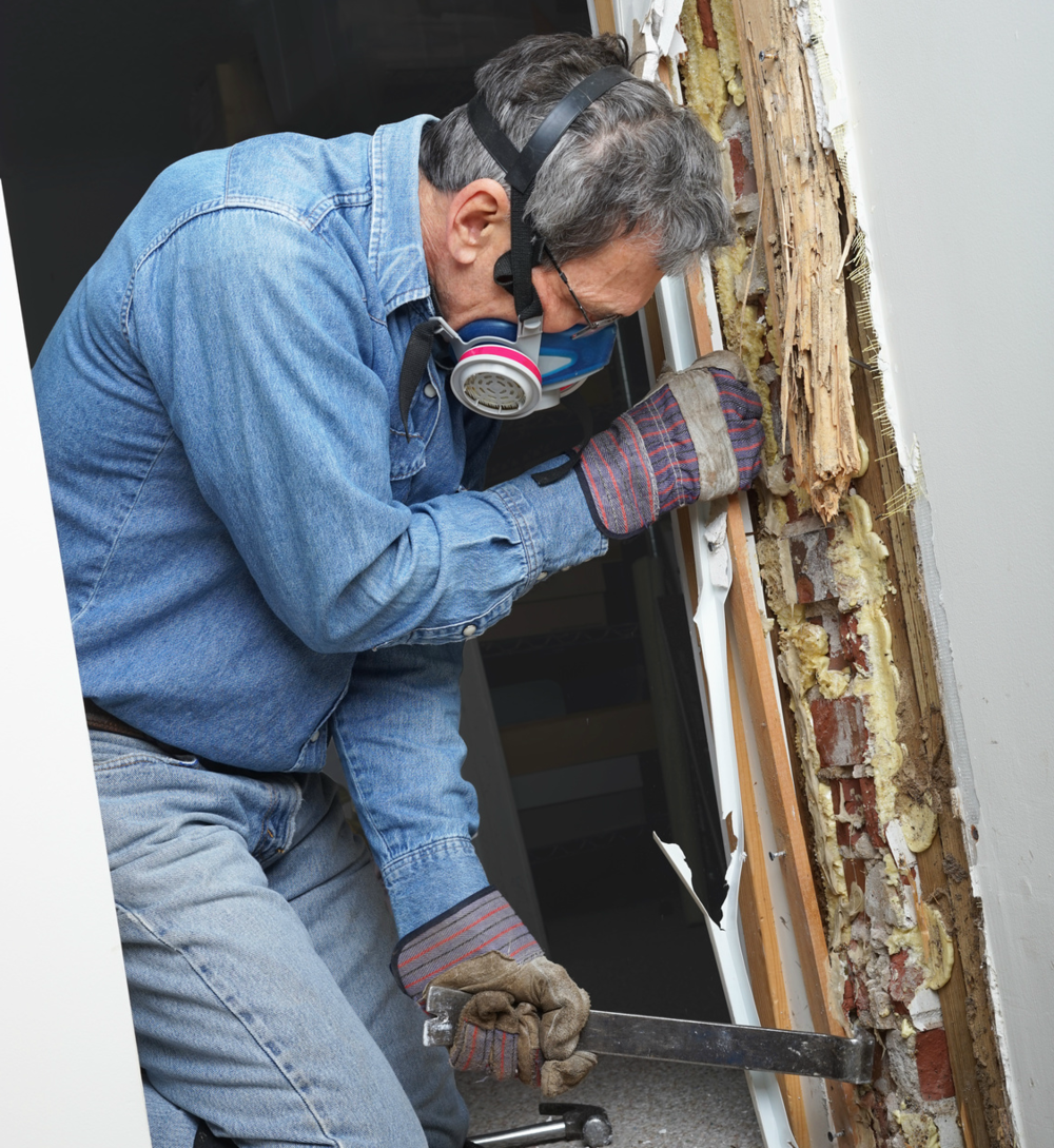 pest control exterminator removing termite infested wood