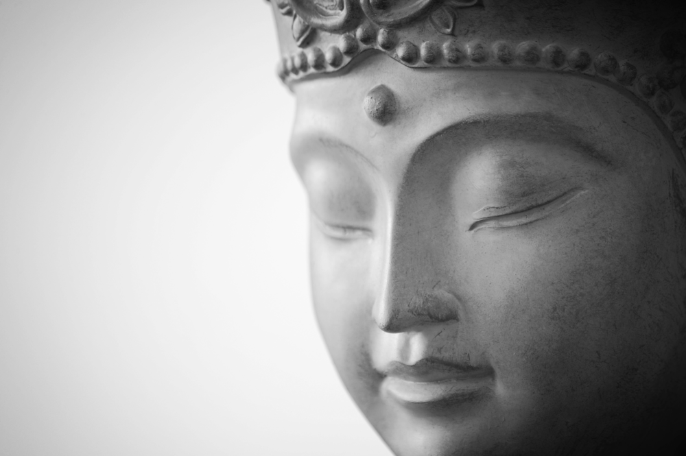 The Bodhisattva Life: Cultivating Wisdom and Compassion These programs build upon the insights of the foundational teachings, offering us deeply transformational guidance in cultivating, uncovering, and living from our innate wisdom and compassion.