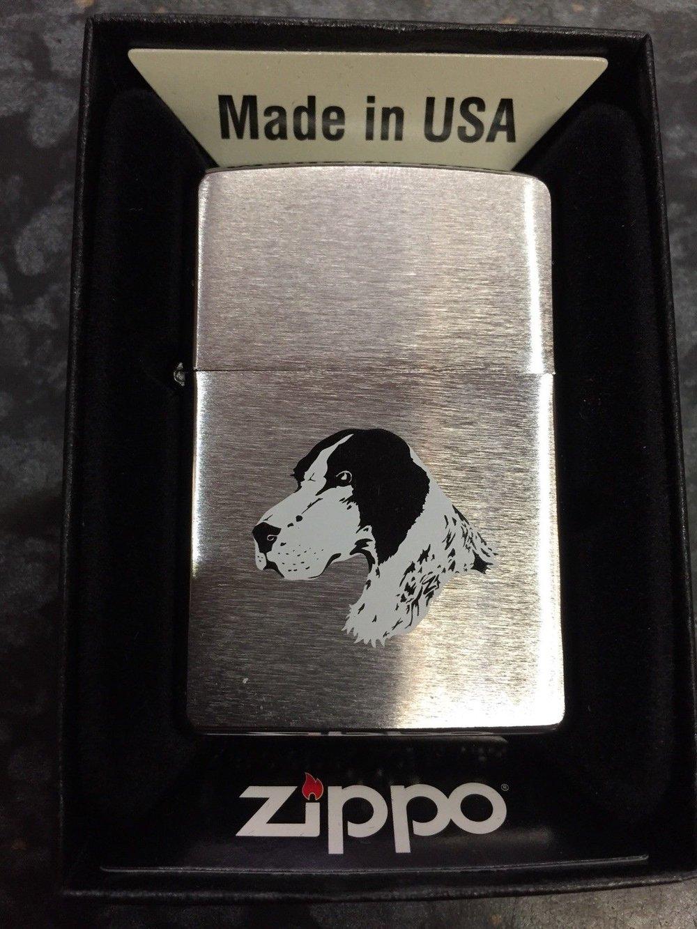English Setter Zippo