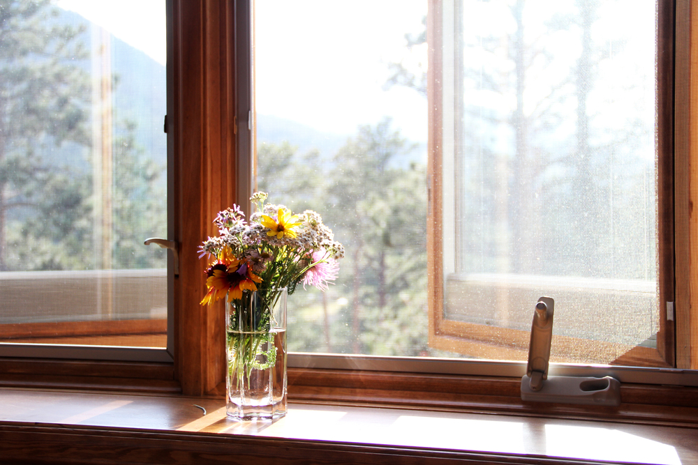 Wildflowers that I picked from outside our cabin. This window is where I sat most days spending time drinking in the sunshine while working on my very first weaving.