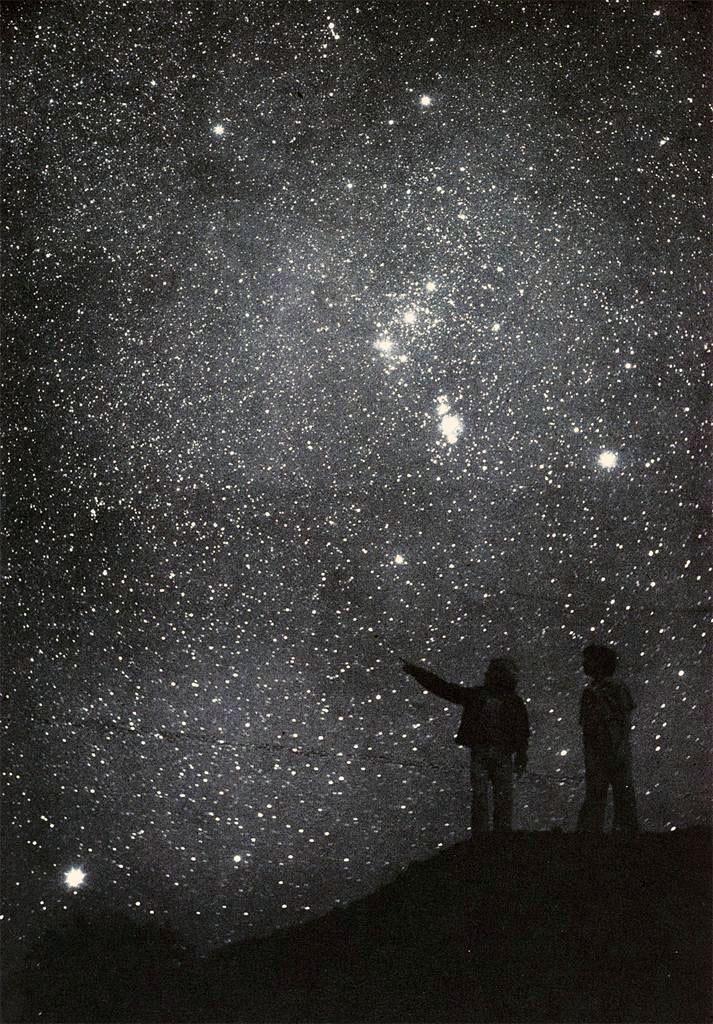 laplumeabelle: flosvitae Orion rising, north hemisphere