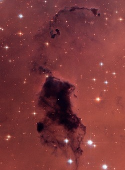 thingsofsorts :     Bok Globules in NGC 281 (by  Hubble Heritage )