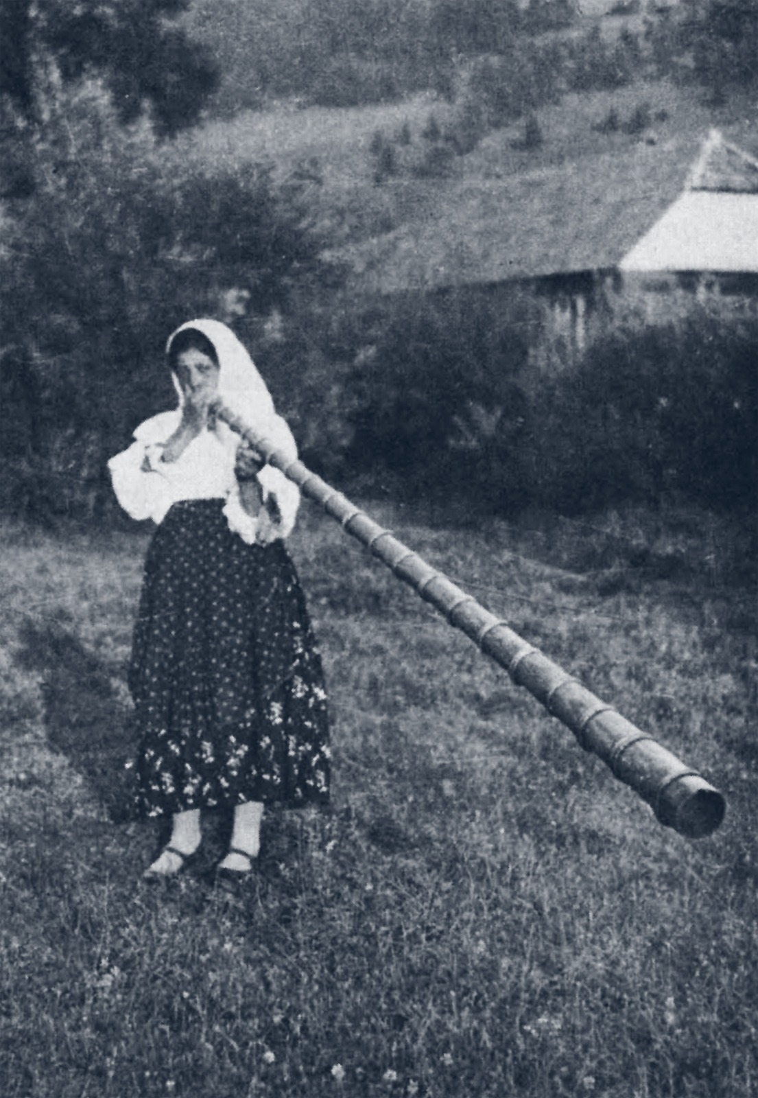 "Transylvanian signal for spring - the ""tulnic"" is a variety of  alphorn  favoured by young women (via  chaudron )"