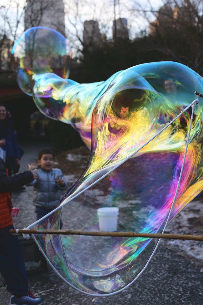 Bubbles in Central Park (1)