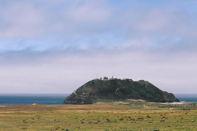 Big Sur (19)
