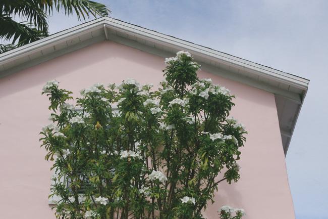 Florida Keys-12