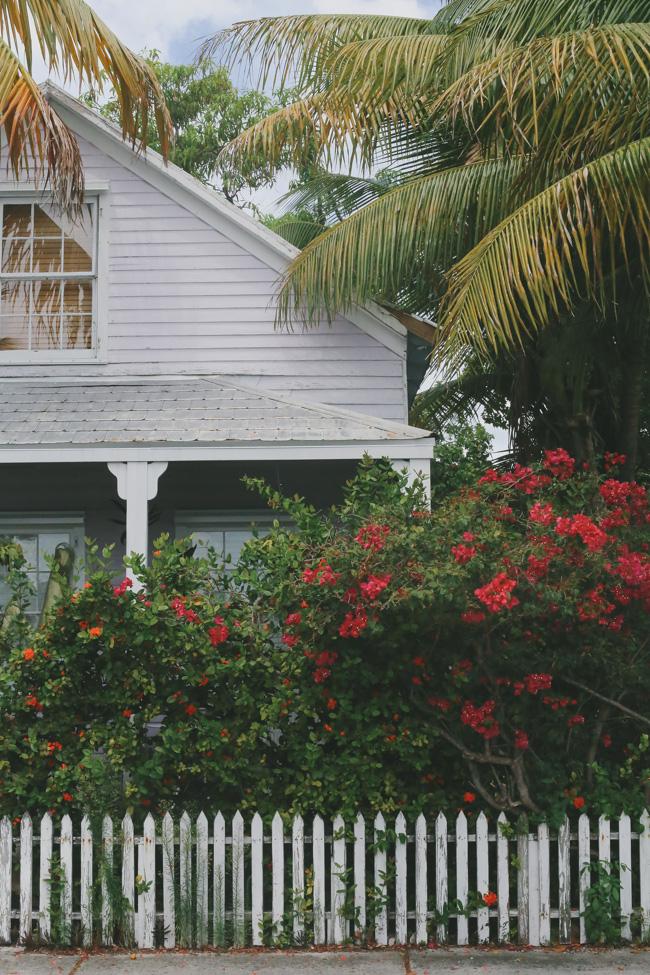 Florida Keys p-6