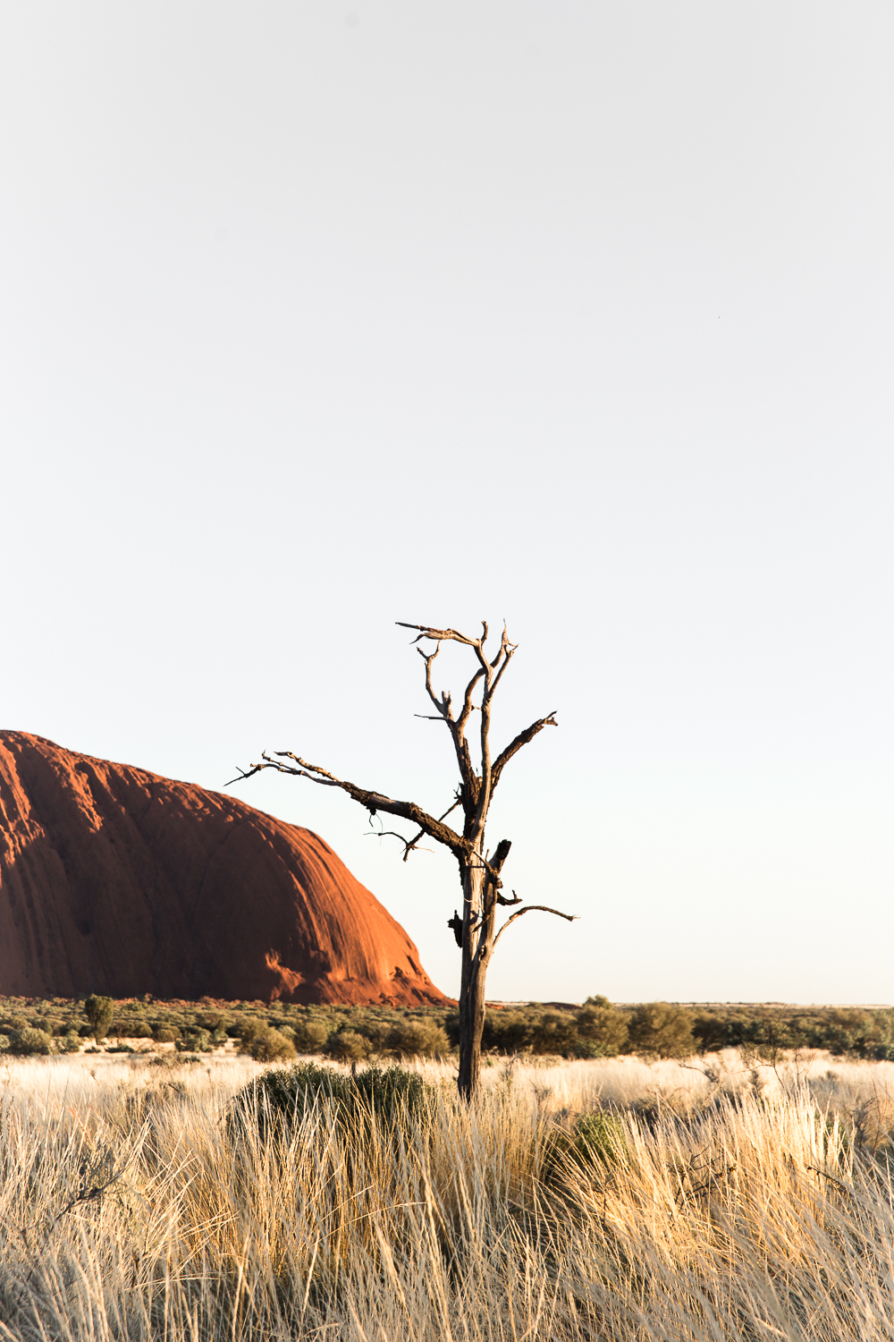 Lean Timms Uluru  (29 of 57).jpg