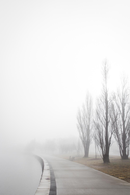 Lean Timms Canberra Fog (8 of 21).jpg