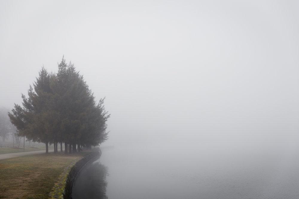 Lean Timms Canberra Fog (12 of 21).jpg