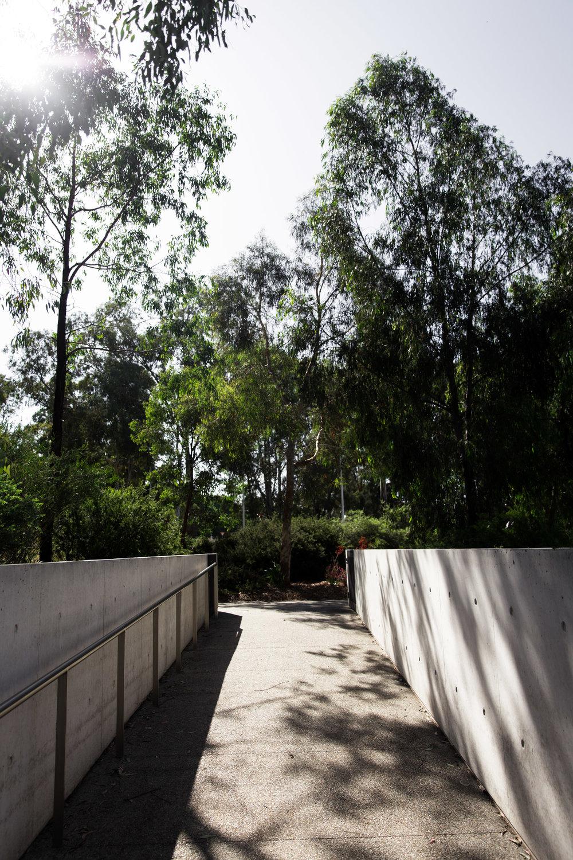 Lean Timms Canberra D8.jpg
