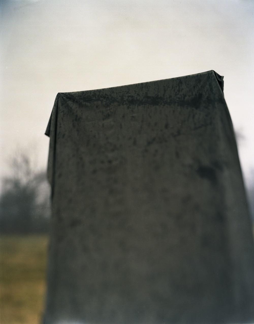 january gray 6