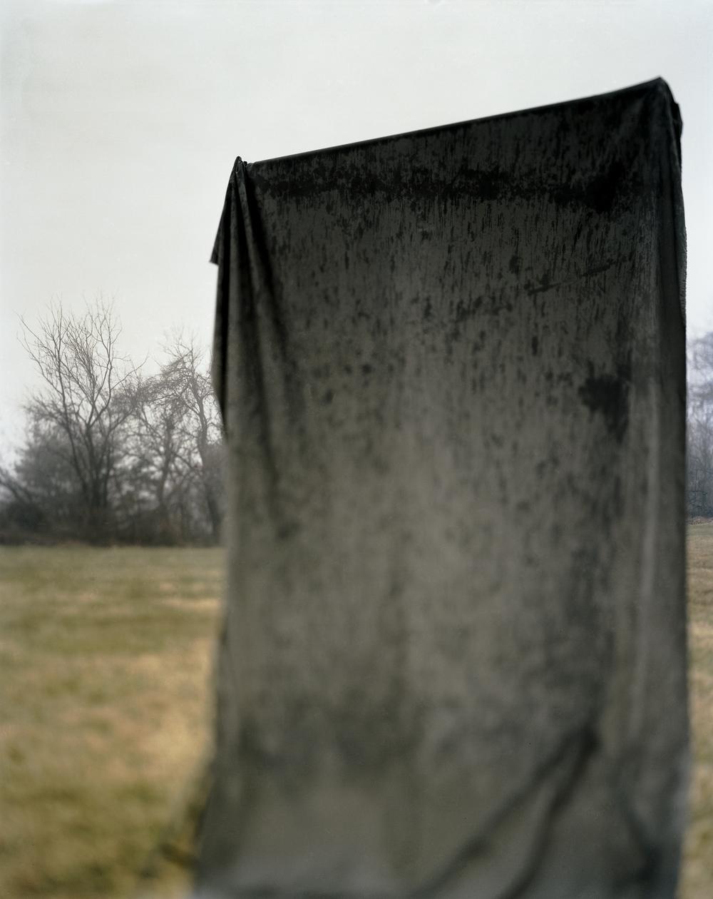 january gray 2
