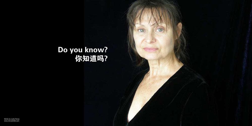 DETAIL, Mona Lisa Smiles, 1/11 Posters, Shanghai    2008