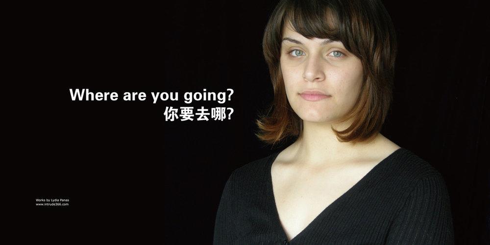 DETAIL, Mona Lisa Smiles, 11 Posters, Shanghai   2008