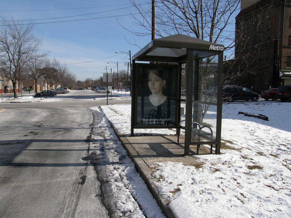 Mona Lisa Smiles, 1/ 11 Bus Shelters, Lehigh Valley, PA  2009