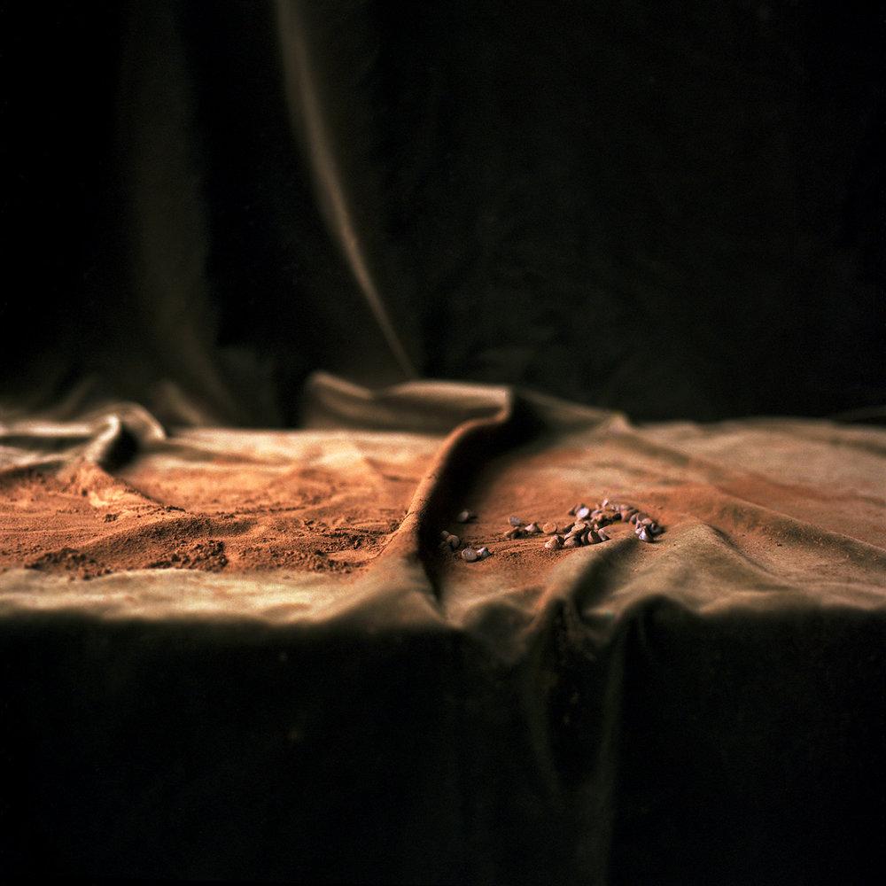 Chocolate Dust 6.jpg