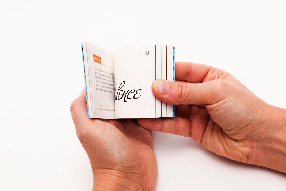 Veer Type Flip Book.jpg