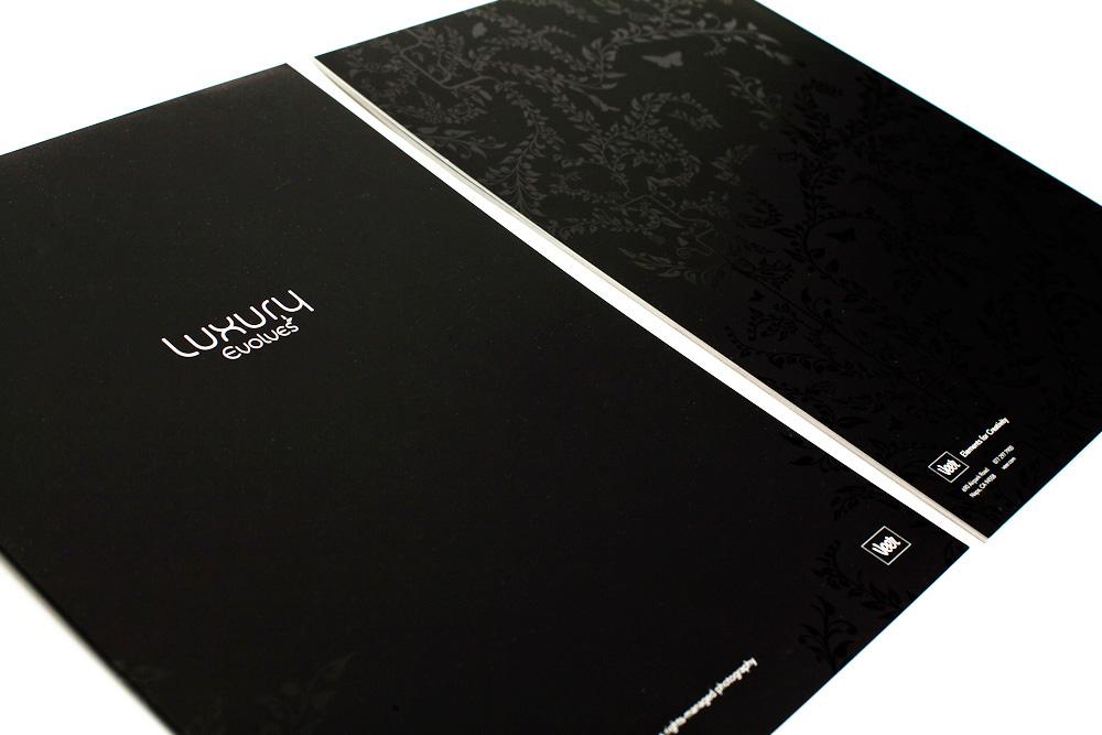 Veer LE Cover&Back.jpg