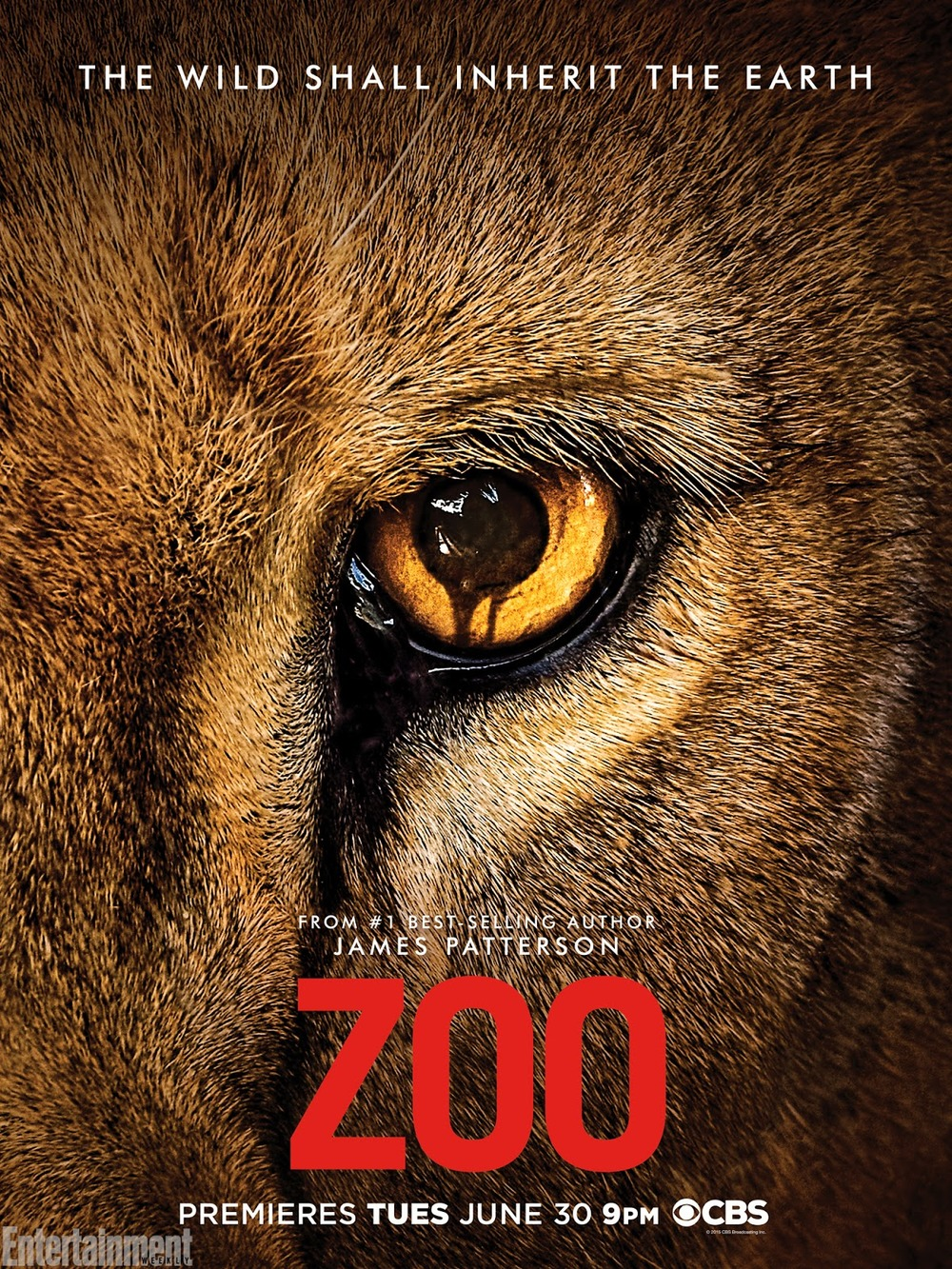 Zoo_TV_series_promo_poster.jpg