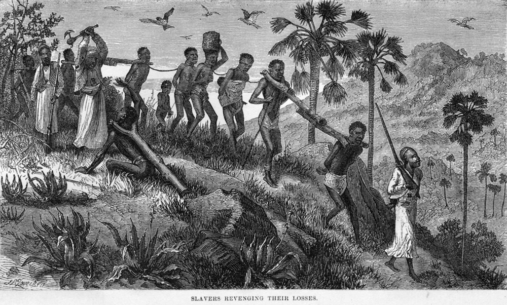 Depiction of a coffle of enslaved men, women, and children in central Africa, published in  The Last Journals of David Livingstone  (1874). Source:  slaveryimages.org