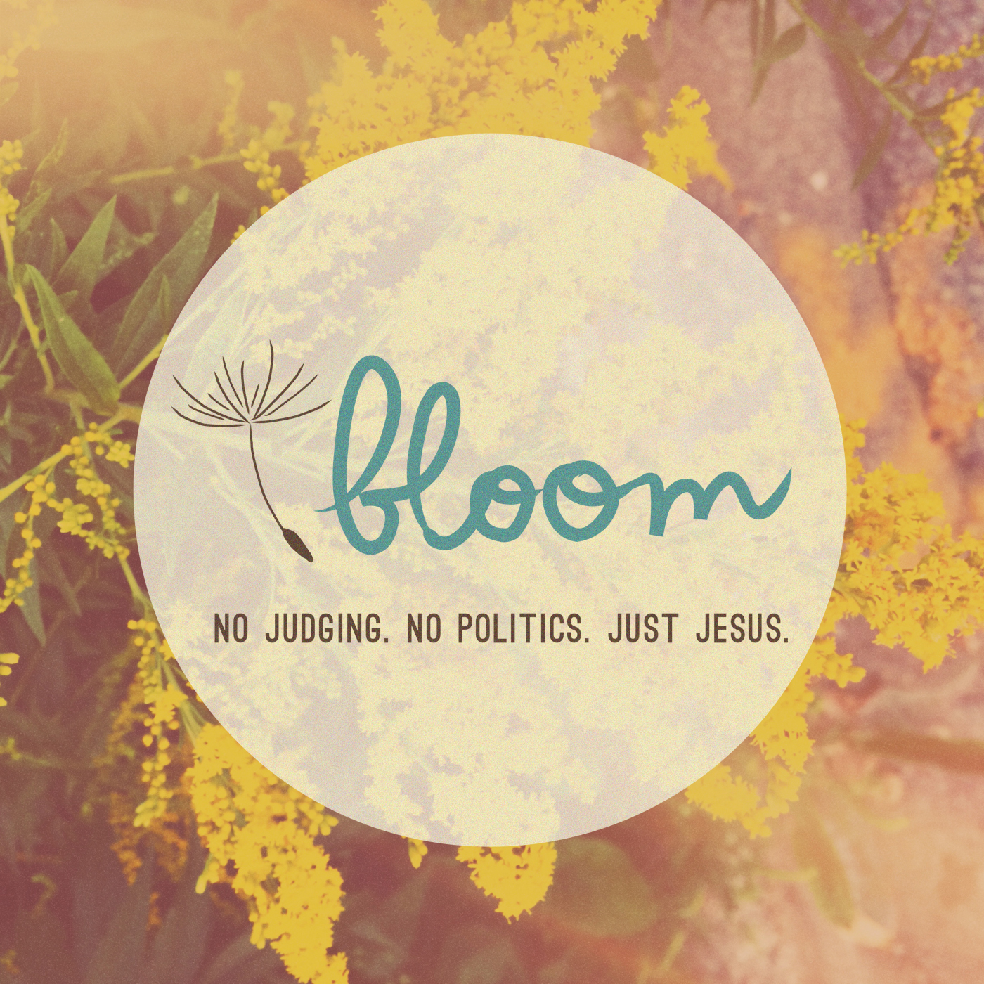 Podcasts - Bloom