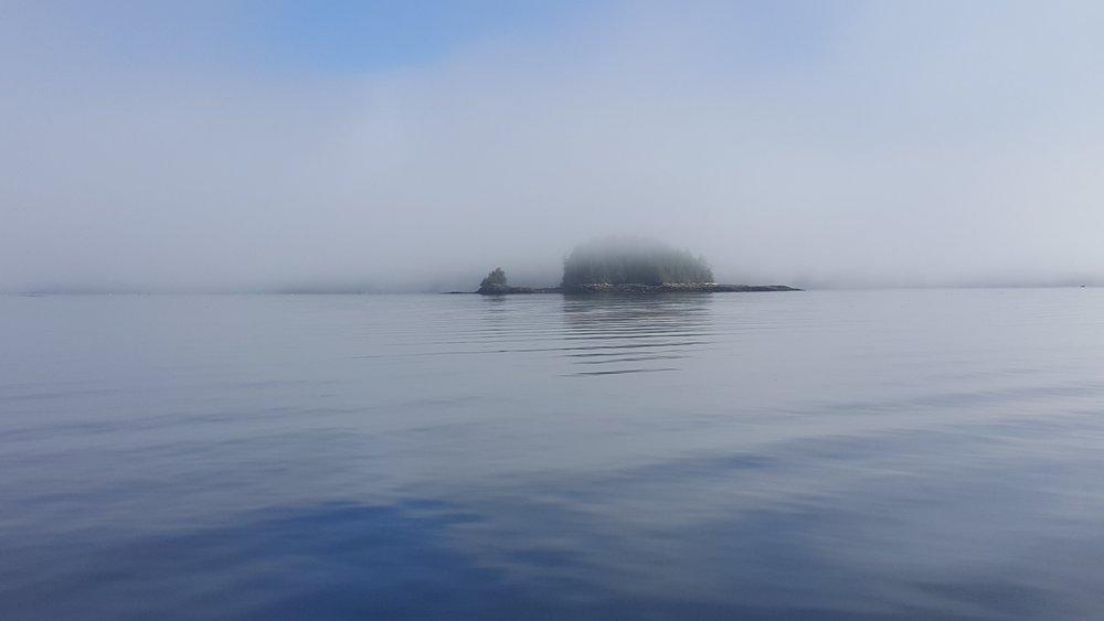 Prince Rupert Ferry View