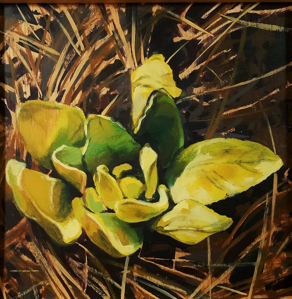 """Lambs Ear"", oil on wood, 8""x 8"", $325"