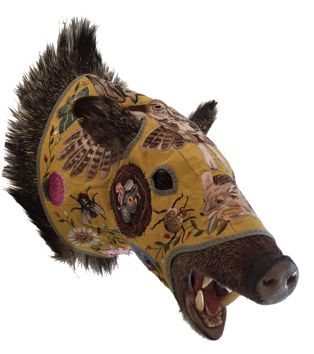 javelina_yellow copy.jpg