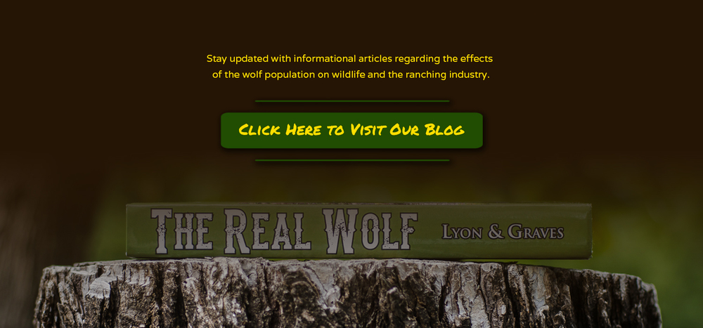 TRW homepage header-5(brown).jpg