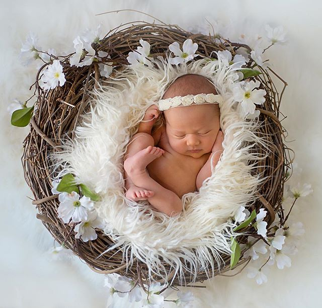 Sweet little Brooklyn. #kimrobbinsphotographer #wheremomentsandcreativityconnect