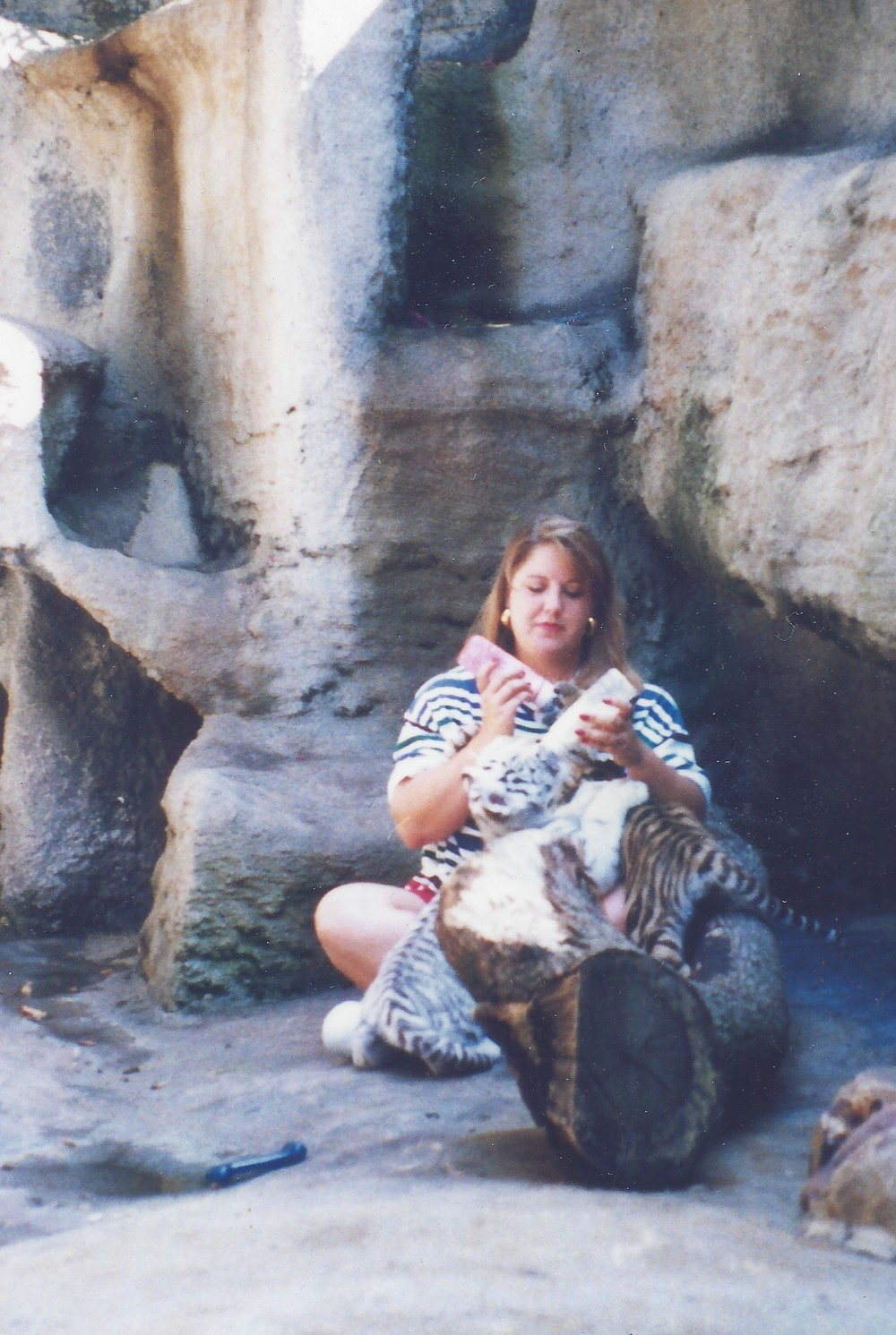 Betsy with tiger cubs