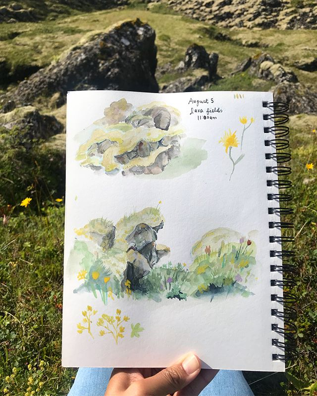 Exploring the lava fields. From afar they look simply rocky and mossy but under closer inspection, there are incredible wildflowers and growth and brightness everywhere. #lightgreyicelandresidency #lgalteamvatn