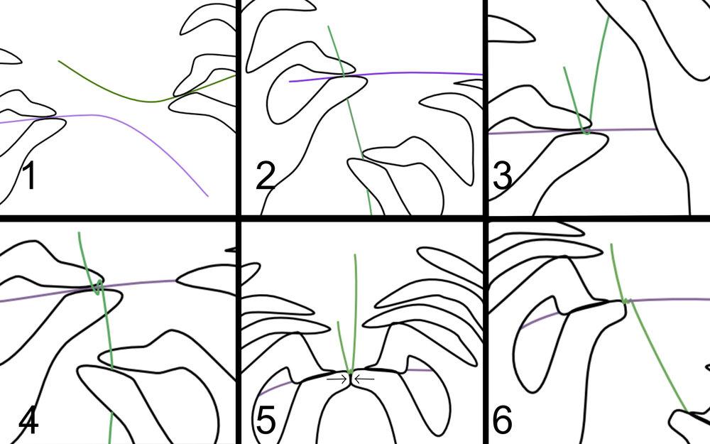 How To Wire Wrap123.jpg