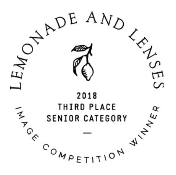 lemonade and lenses winner.jpg