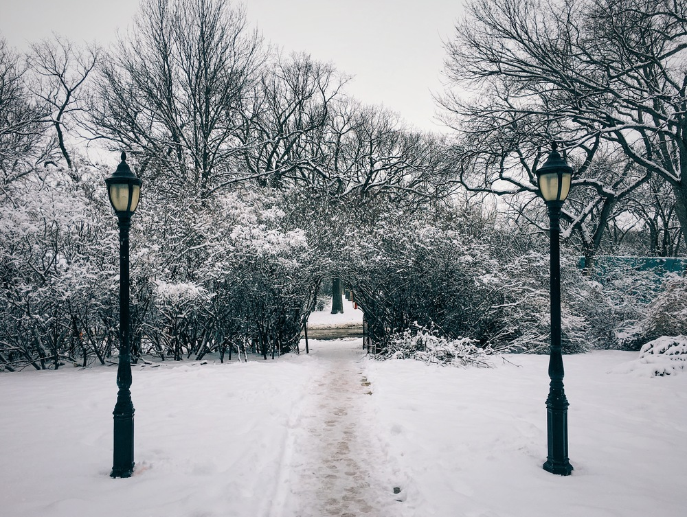 Lampposts-snow-6RuskinRow.JPG