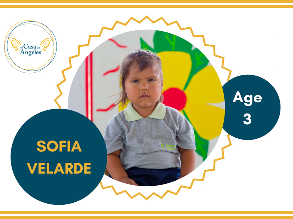 Website Pic - (3) Sofia Velarde.png