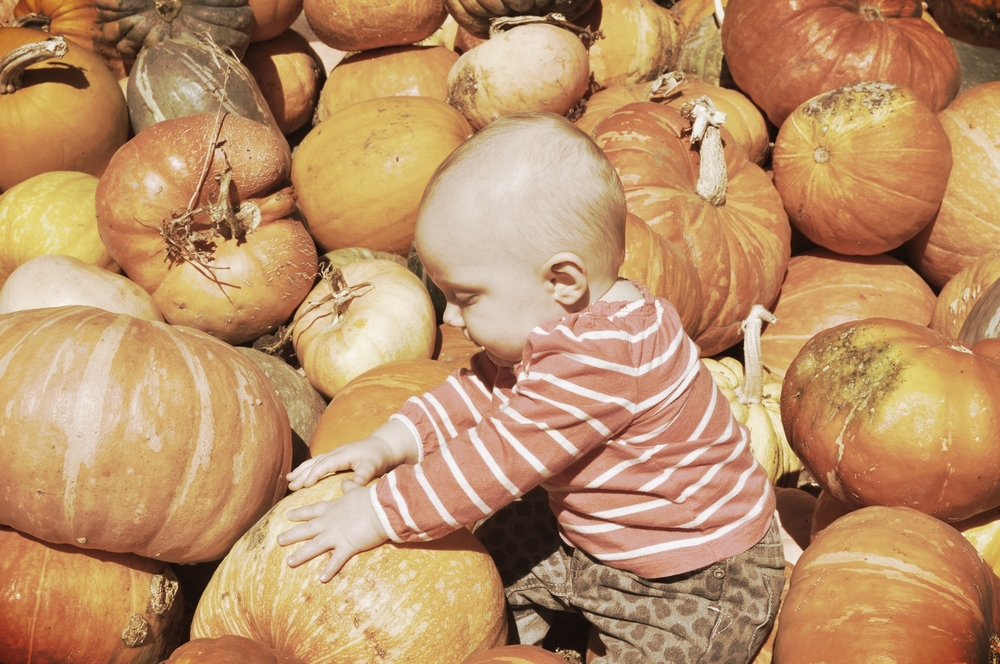Throwback to Toddler G's first Halloween at Earthbound Farms, Carmel Valley.