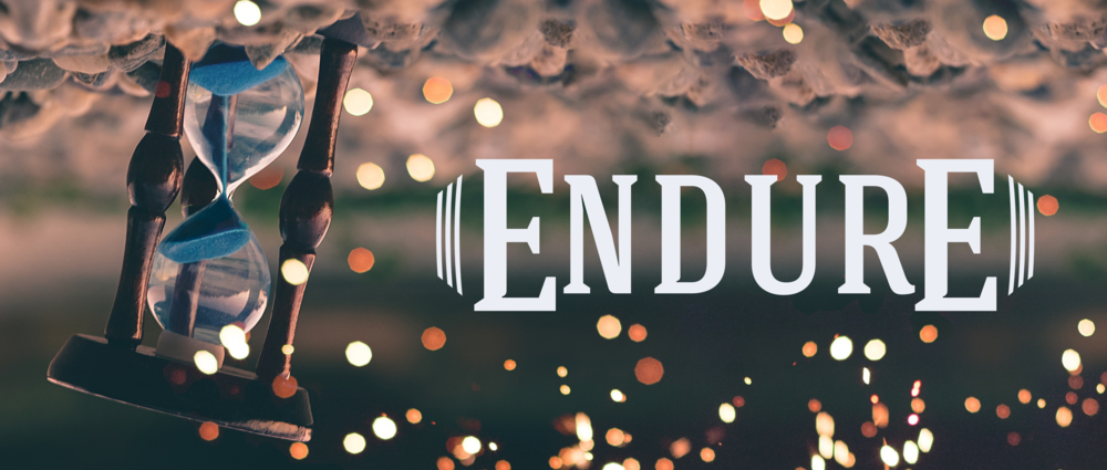 2019_Endure.png