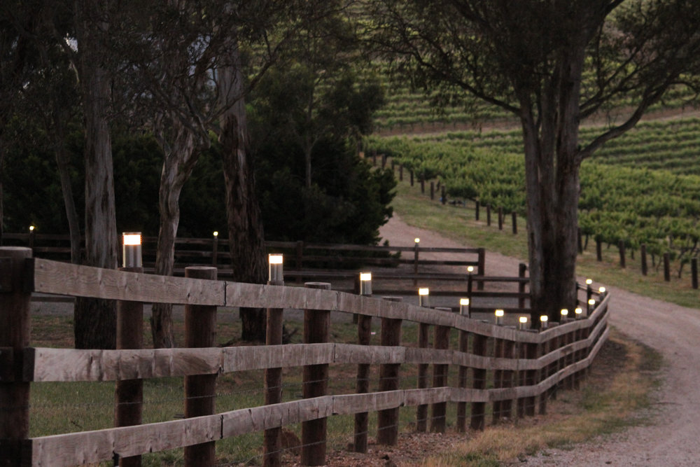 Building works - Yangarra Estate Vinyard