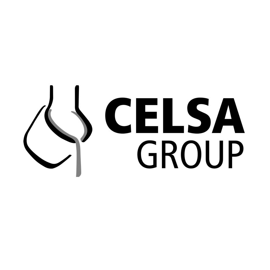 CELSA GROUP.png